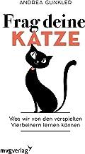 Depression bei Katzen: Eine dringend zu behandelnde Erkrankung