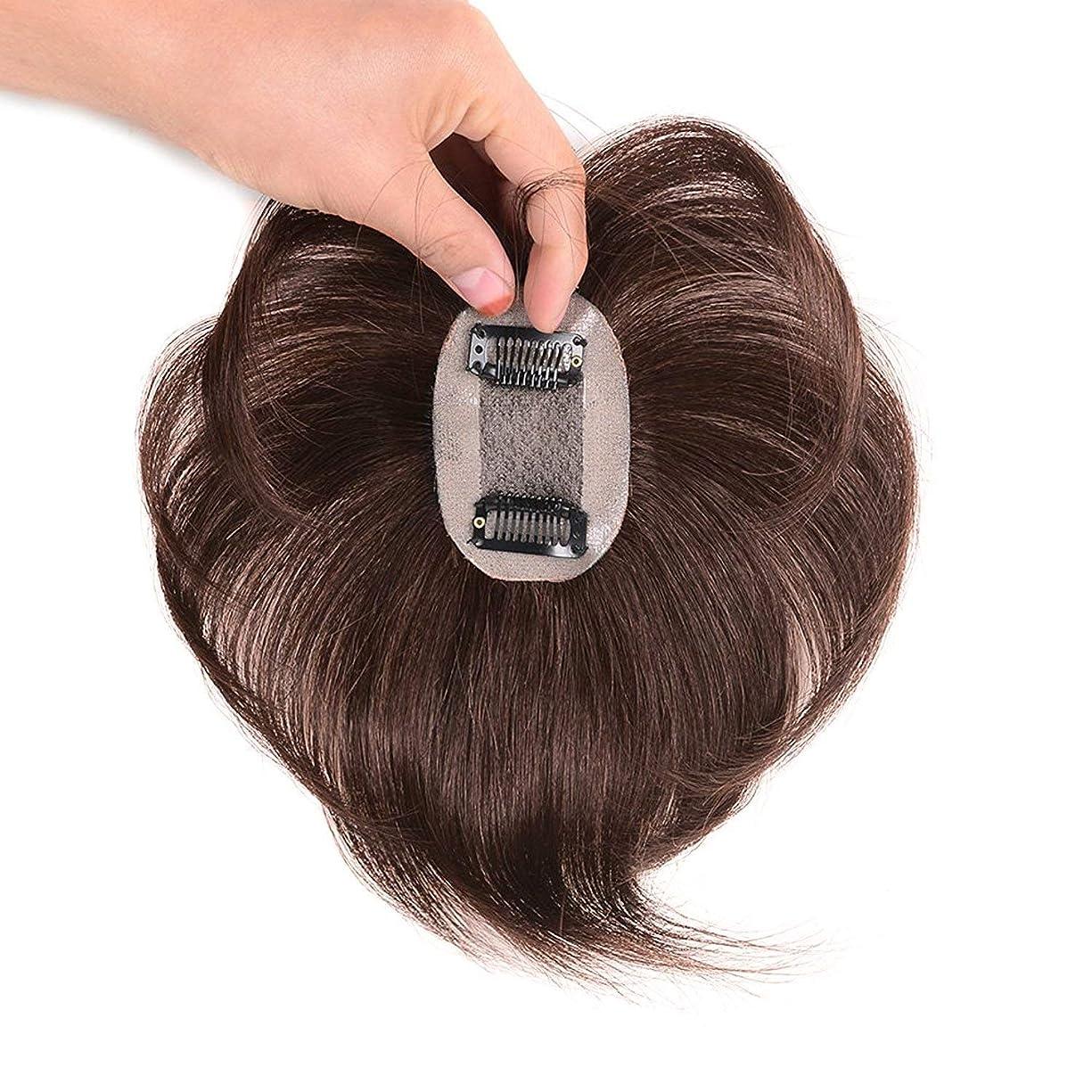 磨かれた地図帰する【ASSE】ウィッグ ストレートヘアー 通気 ウイッグ かつら 総手植え人毛100% 脱毛隠しヘアーピース つむじ人工スキン