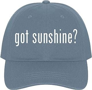 The Town Butler got Sunshine? - A Nice Comfortable Adjustable Dad Hat Cap