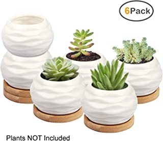 Succulent Plant Pot, ZOUTOG Water Pattern Mini 3.6 inch Ceramic Succulent Pots with Bamboo Tray, Pack of 6 (Plants NOT Included)