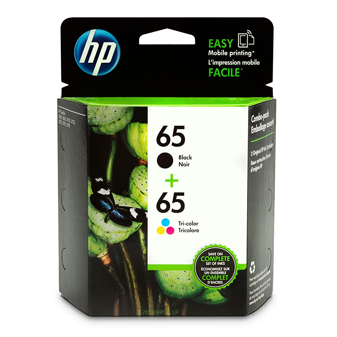HP 65 Black & Tri-color Ink Cartridges, 2 Cartridges (N9K01AN, N9K02AN) for HP DeskJet 2624 2652 2655 3722 3752 3755 3758 sxo72520716