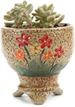 JynXos 3.5 Inch Ceramic Hand Painted Tripod Stand Tall succulent Plant Pot/Cactus Plant Pot Flower Pot/Container/Planter