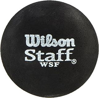 Wilson Unisex Adult 2-WRT617500 Staff Squash 2 Ball - Blue Dot, One Size