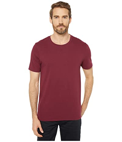 Alternative Heavy Wash Jersey Outsider Tee (Currant) Men