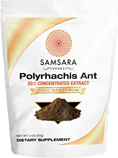 Samsara Herbs Polyrhachis Ant Extract Powder - 20:1 Concentrated Extract (2oz/57g)