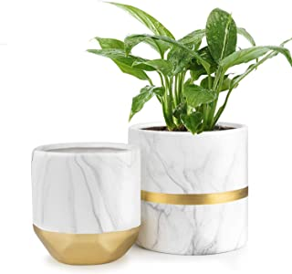 HOMENOTE White Ceramic Flower Pot Garden Planters 6/4.8 inch Pack 2 Indoor, Plant Containers with Marble Texture and Gold Detailing