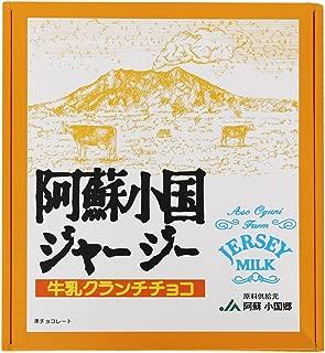 阿蘇 小国 ジャージー牛乳 チョコクランチ 24個入り