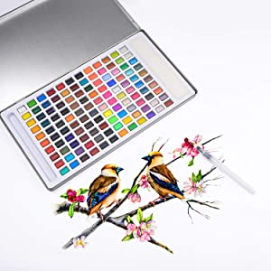 Watercolor Paint Set-Premium Watercolour Paint Box with 120 Colors-1 Water Brush Pen-1 Sponge in a Lightweight Metal Case with a Colorful Package for Professional Artists,Students