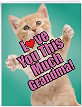 Cat Love You This Much Grandma - Stylish Happy Mother's Day Card with Envelope (8.5 x 11 Inch) - Big, Adorable Animal Gratitude Notecard - Sweet Appreciation Greeting Card for Grandmother J6610GMGG