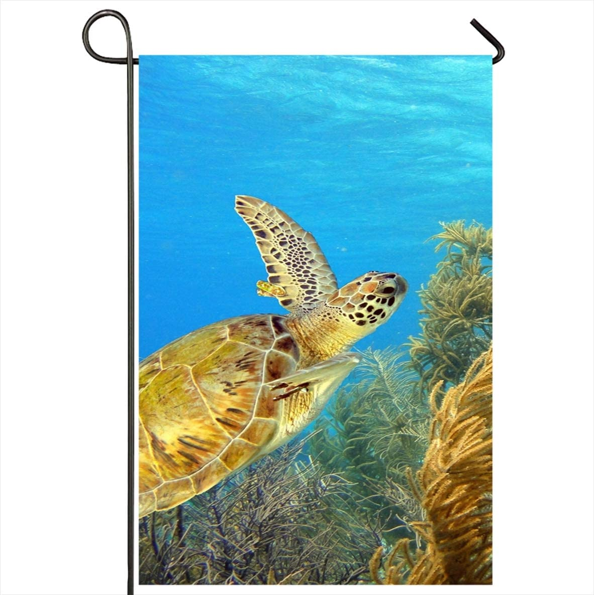 Amazon Com Onete Garden Flag 28x40 Inches Blue Bonaire Green Turtle Swimming Along Tropical Animals Wildlife Antilles Nature Caribbean Coral Outdoor Seasonal Home Decor Welcome House Yard Banner Sign Flags Garden