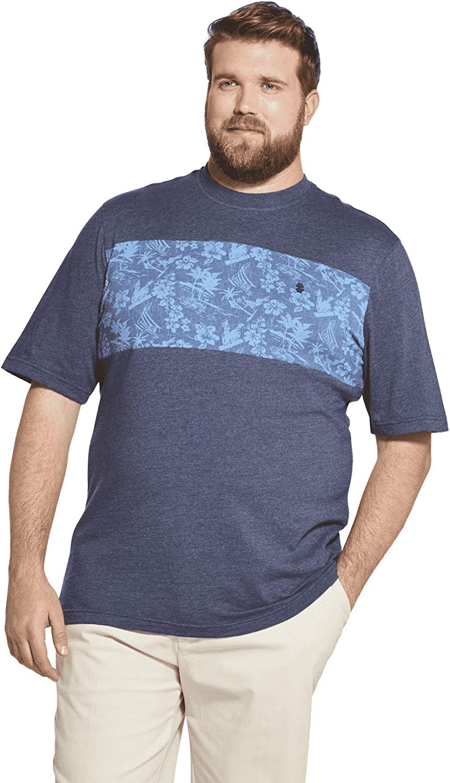 IZOD Men's Big and Tall Saltwater Short Sleeve Colorblock T-shirt