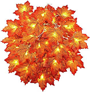 AGCary 20 LED Maple Leaf String Lights Waterproof Decorations 6.5ft Fall Garland Lights 3AA Battery Powered Lighted Garland for Holiday Party Indoor Outdoor Halloween Thanksgiving Decor