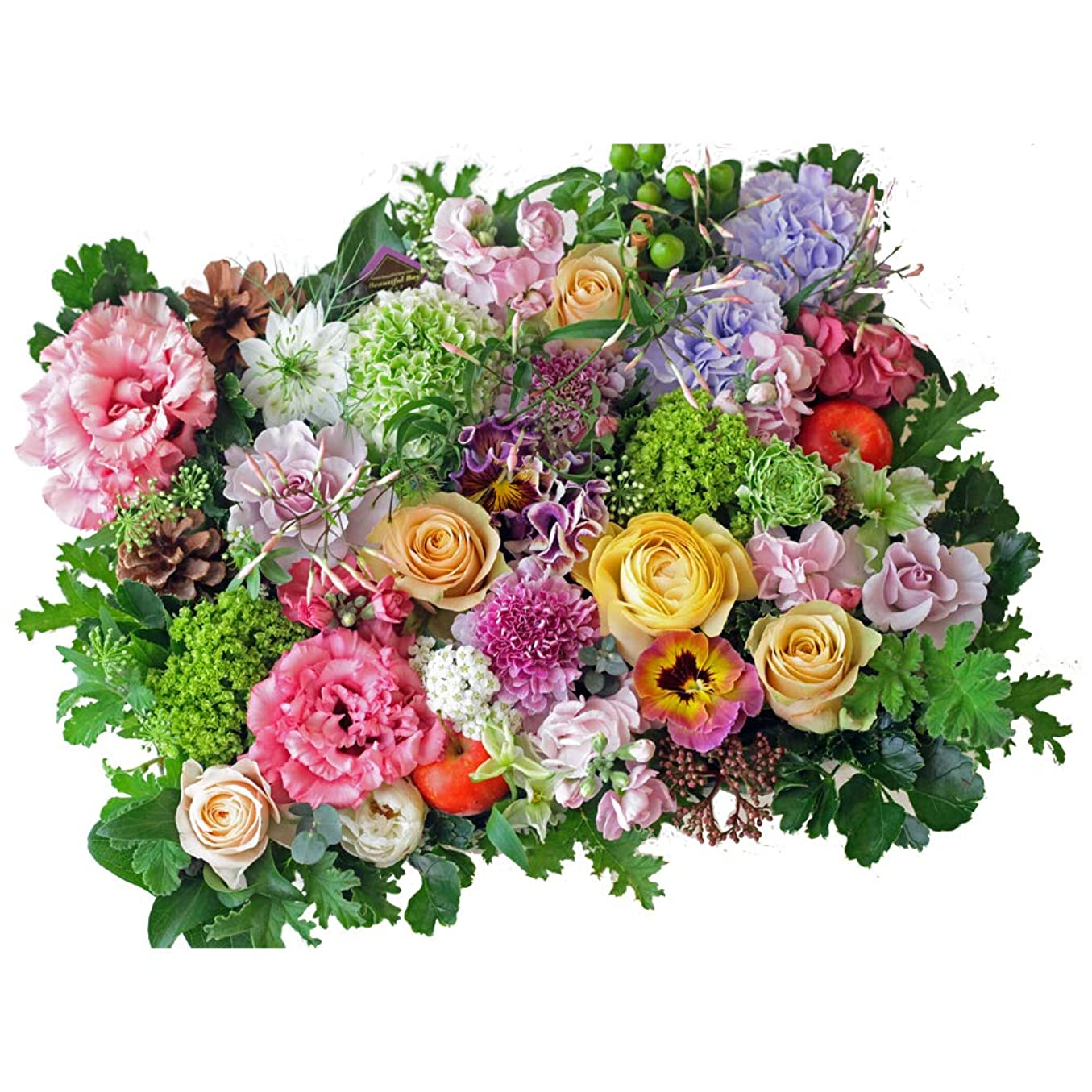 式フクロウ減少フラワー ギフト お祝い Congratulations アレンジメント おめでとう!の気持ちを込めて 季節のお花を使った生花 フラワーアレンジメント Congratulationsピック付
