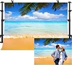 Best beach backdrop for photography Reviews