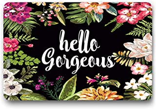 Funny Design Hello Gorgeous Flowers Entrance Doormat Mat Rug Cover House Doormat Non Slip Rubber Kitchen Rugs (L23.6