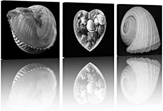 NAN Wind 3 Piece Black and White Modern Decor Seascape Seashells on The Beach Pictures to Photo Paintings on Canvas Wall Art for Bathroom