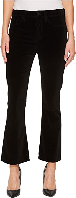 Hudson - Brix High-Rise Cropped Boot Velvet Jeans in Black Star
