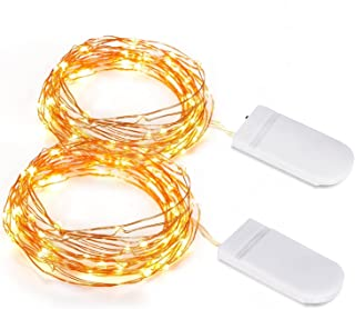 Kohree 100 Micro Christmas String Lights on 33 Feet Copper Wire, Seasonal Decor Rope Lights for Festival, Christmas, Weddi...