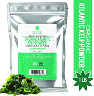 Organic Kelp Powder 1 Pound, Wholefood Dietary Supplement, Raw Sun-Dried Kelp Seaweed from Canada, 100% Pure, Non-GMO, Gluten-Free & Kosher