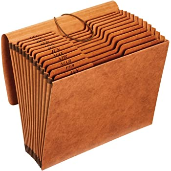 Globe-Weis/Pendaflex Heavy Duty Expanding File with Flap, 12 Monthly Pockets, 1/3 Cut Tabs, Brown, Letter Size (R117MLHD)