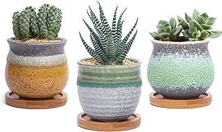 T4U Planta Maceta de Suculento con Bandeja de bambú Pancromático Cerámico Paquete de 3, Cactus Maceteros de Ventana Cajas ...