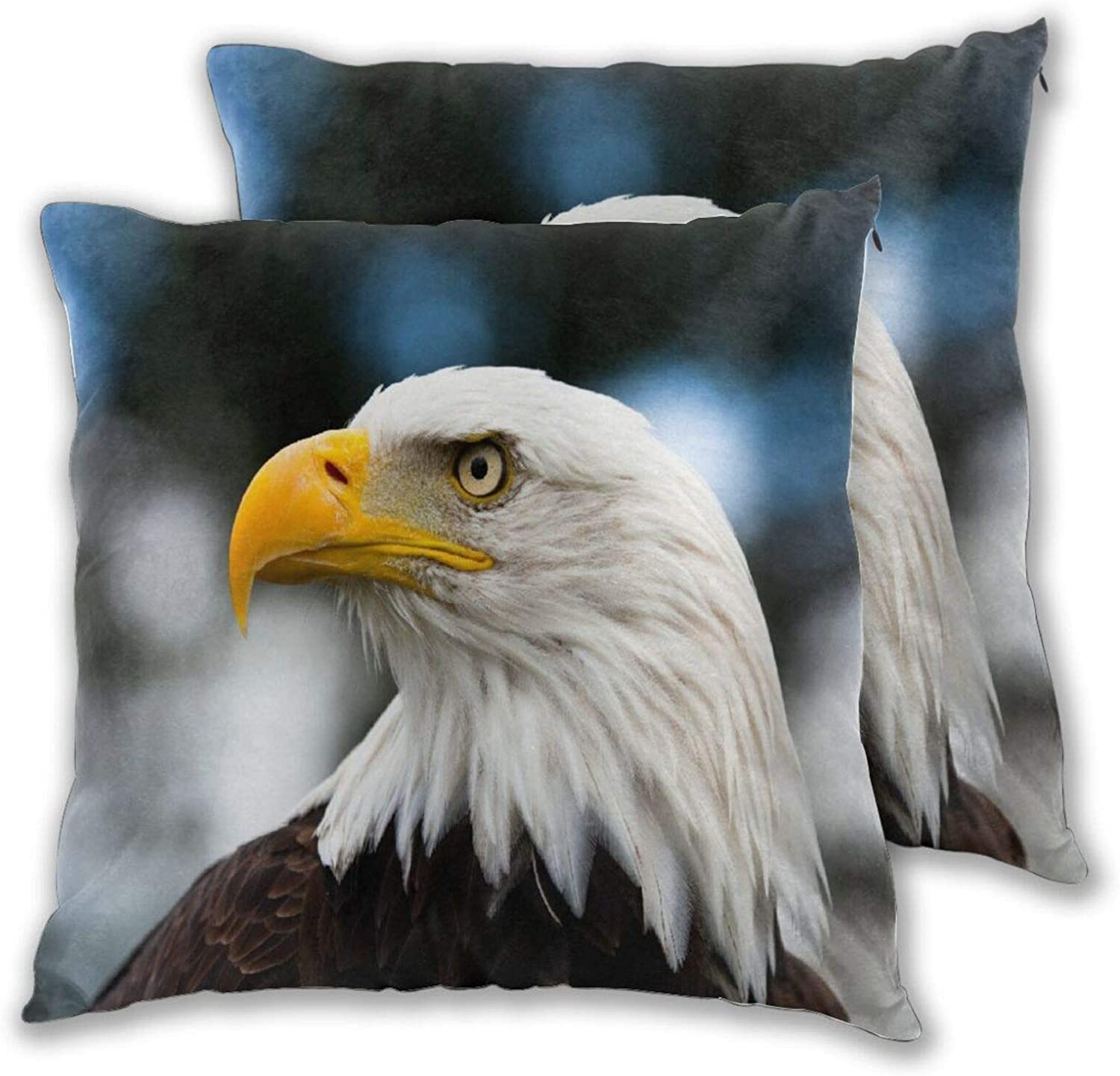 COVASA Pack of 2 Throw Pillow Photo Eagle Genuine Super special price Covers The Head