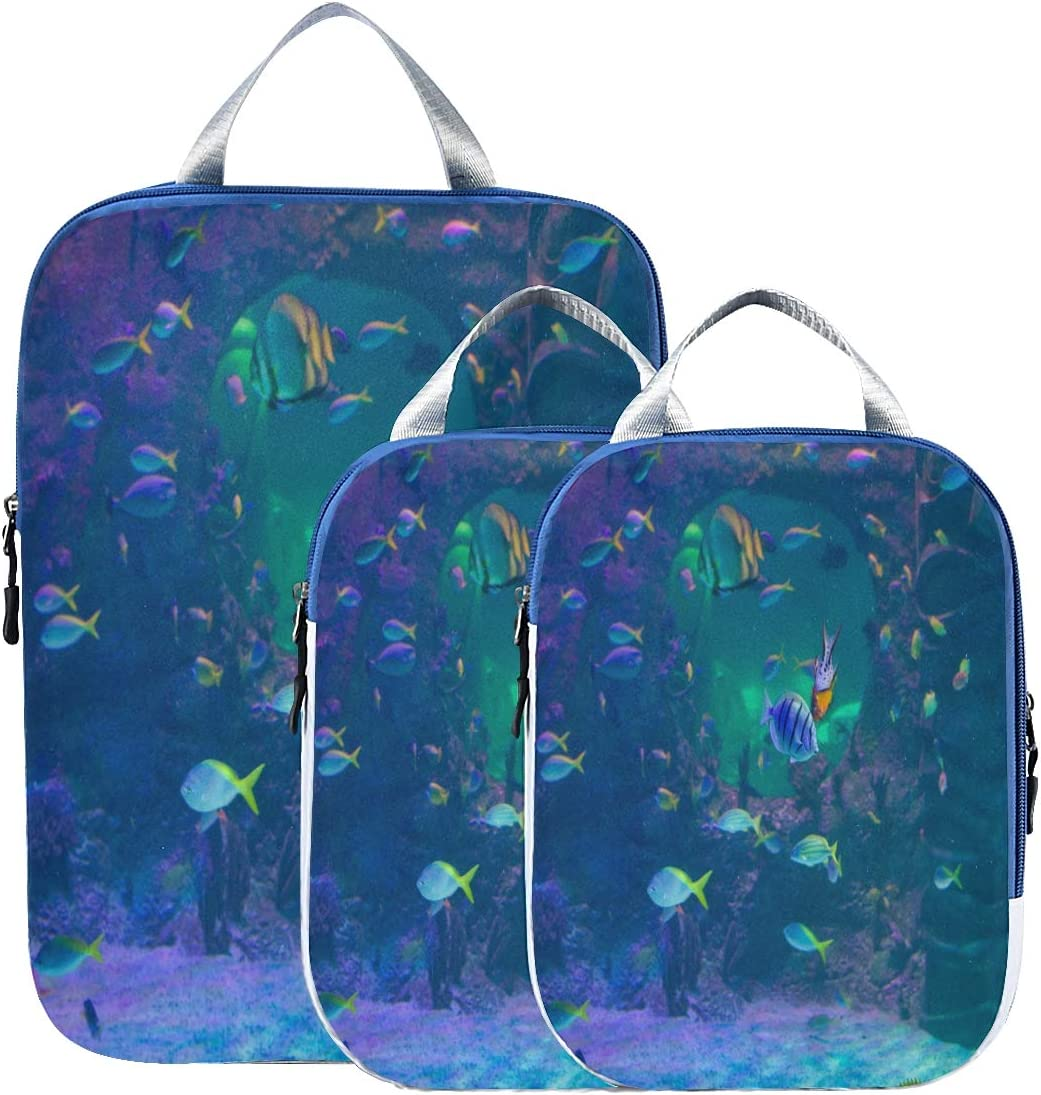 Compression Packing Cubes Direct sale of manufacturer For Travel Fishes Cheap sale In Fantastic Tank Pa