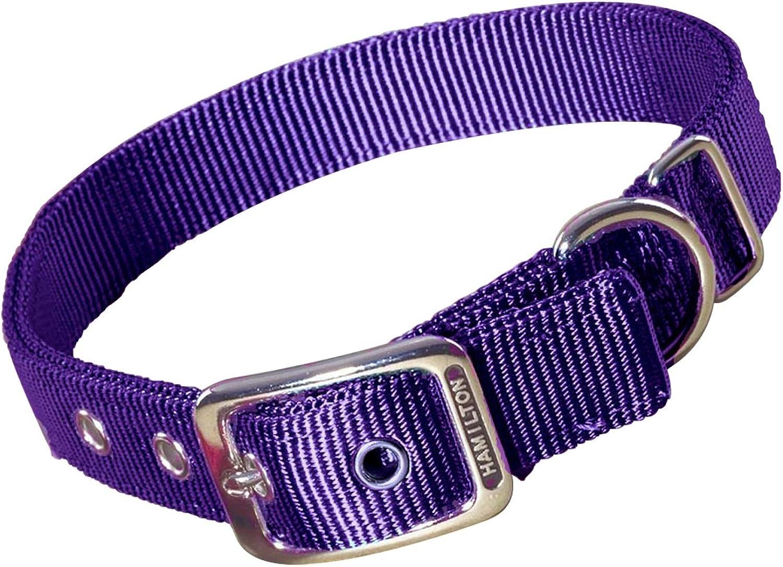Hamilton Double Thick Nylon Deluxe Dog Collar, 1Inch by 30Inch, Purple