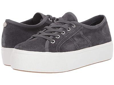 Steve Madden Emmi S Sneaker (Light Grey Suede) Women