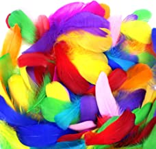 turkey feathers for kids