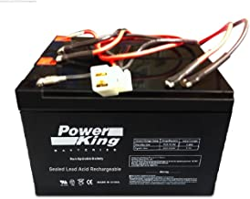 Beiter DC Power Razor E200/300 Electric Scooter Battery E200 (V13+) E300 (V11 & V13+) - W13112430185 Replacement Battery Includes Wiring Harness
