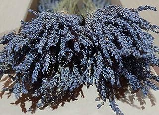 Biologische Griekse Gedroogde Lavendelbundels 1 tot 22 Bundels 30 tot 32 cm Oogst Juli 2020 (2 Bundels + 200 gram Lavendel...
