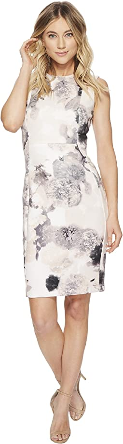 Calvin Klein - Floral Sheath Scuba Sheath CD8MP83X