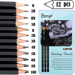 Newbested 12 Drawing Pencils,Art Sketching Pencils 3H,2H,H,HB, B,2B,3B, 4B,5B,6B,8B,10B,Art Pencils Sketch Travel Set Precision Graphite Pencils for Kid Artist,Beginners & Pro Artists with Metal Box