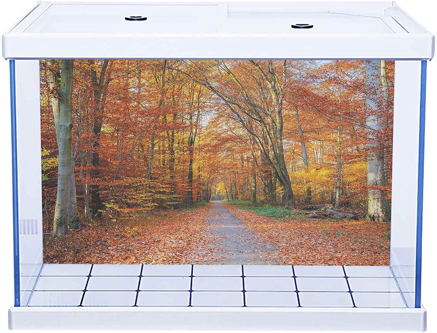 SUZM Aquarium shopping Background Sticker Fall with Pathway Falle ...