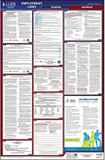 2019 Georgia Labor Law Poster, All-in-One OSHA Compliant GA State & Federal Laminated Poster (26