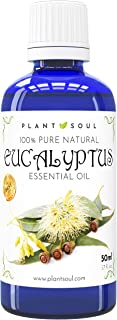 Ätherisches Eukalyptusöl 50ml 100% Rein & Natürlich | 1000 Tropfen | Verleiht aushaltsprodukten einen angenehmen Duft | Unterstützt schmerzende Muskeln | Stimuliert eine gute Durchblutung