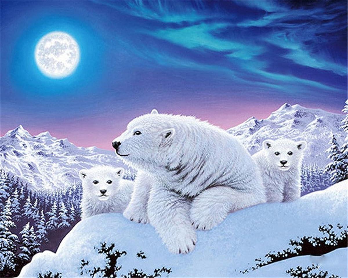 CaptainCrafts Diy 5D Diamond Painting by Number Kits Full Drill Diamond Painting - Moon Snow Mountain Polar Bear Family (25X20cm/10X8inch)