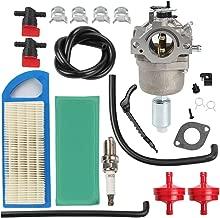 Best briggs & stratton 794572 carburetor Reviews