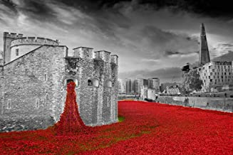 Andrew Evans Photos Tower of London Poppy Poppies Photograph Blood Swept Lands and Seas of Red England UK Landscape Photo b/w Picture Art Print Photography Gift (18