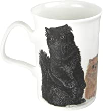 Roy Kirkham Cats Galore Persian Fine Bone China Coffee or Tea Mug