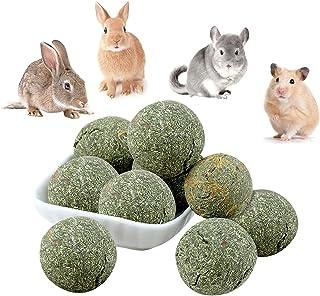 Was können Kaninchen essen und was nicht?