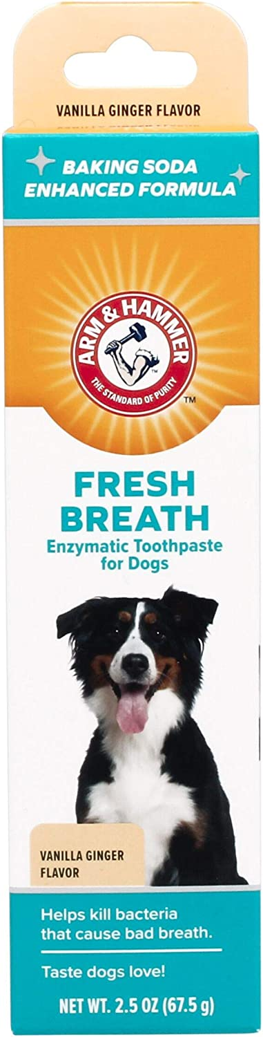 Arm & Hammer Dog Dental Care Toothpaste for Dogs   No More Doggie Breath   Safe for Puppies