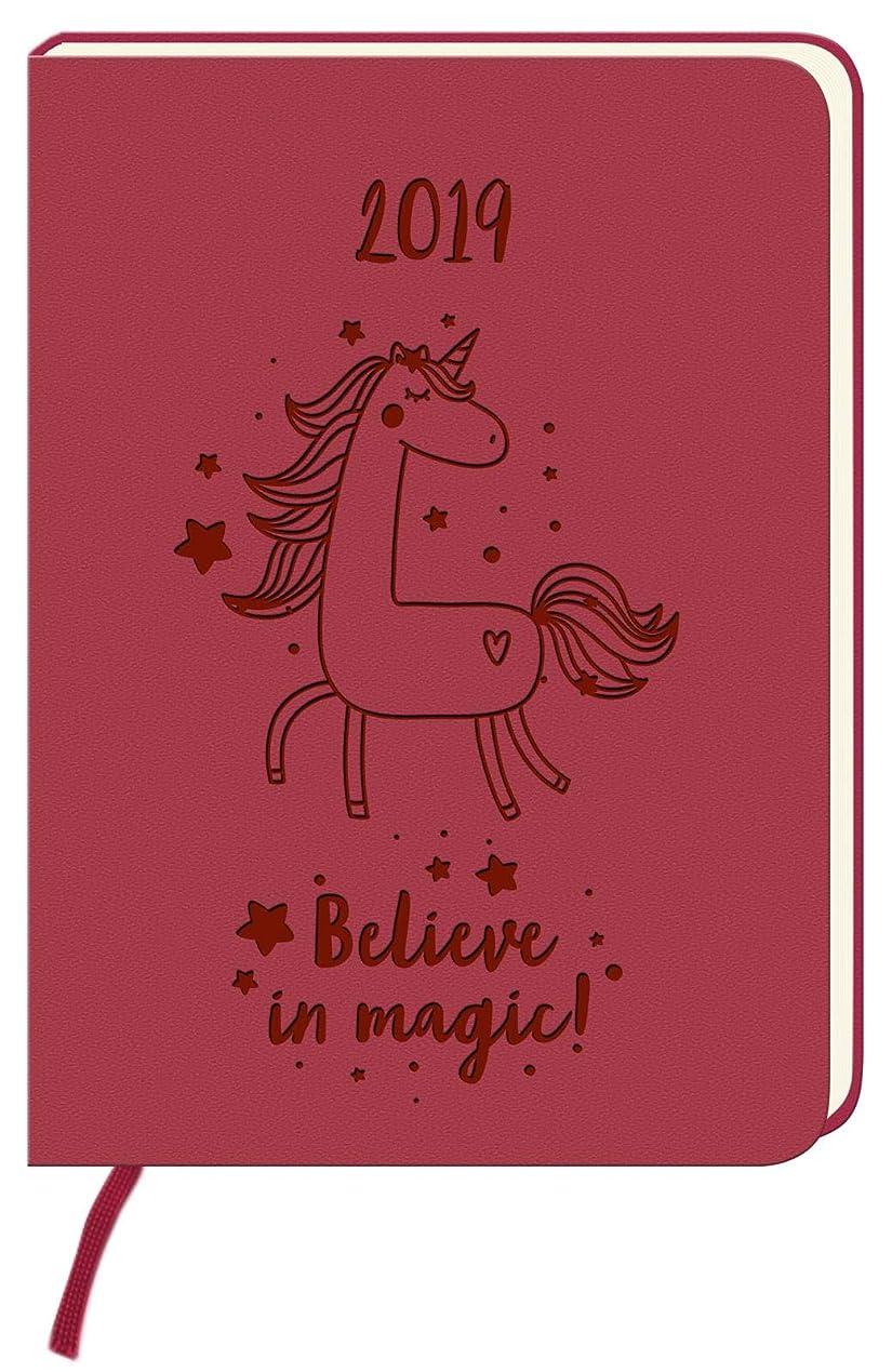 手当機関考えたKalender 2019 Believe in magic!