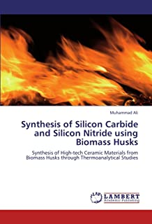 Synthesis of Silicon Carbide and Silicon Nitride using Biomass Husks: Synthesis of High-tech Ceramic Materials from Biomass Husks through Thermoanalytical Studies