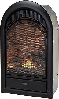 Duluth Forge Dual Fuel Vent Free Insert-15,000 BTU, T-Stat, Brick Liner Fireplace Insert, Black