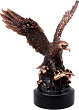 Best eagle catching fish Reviews