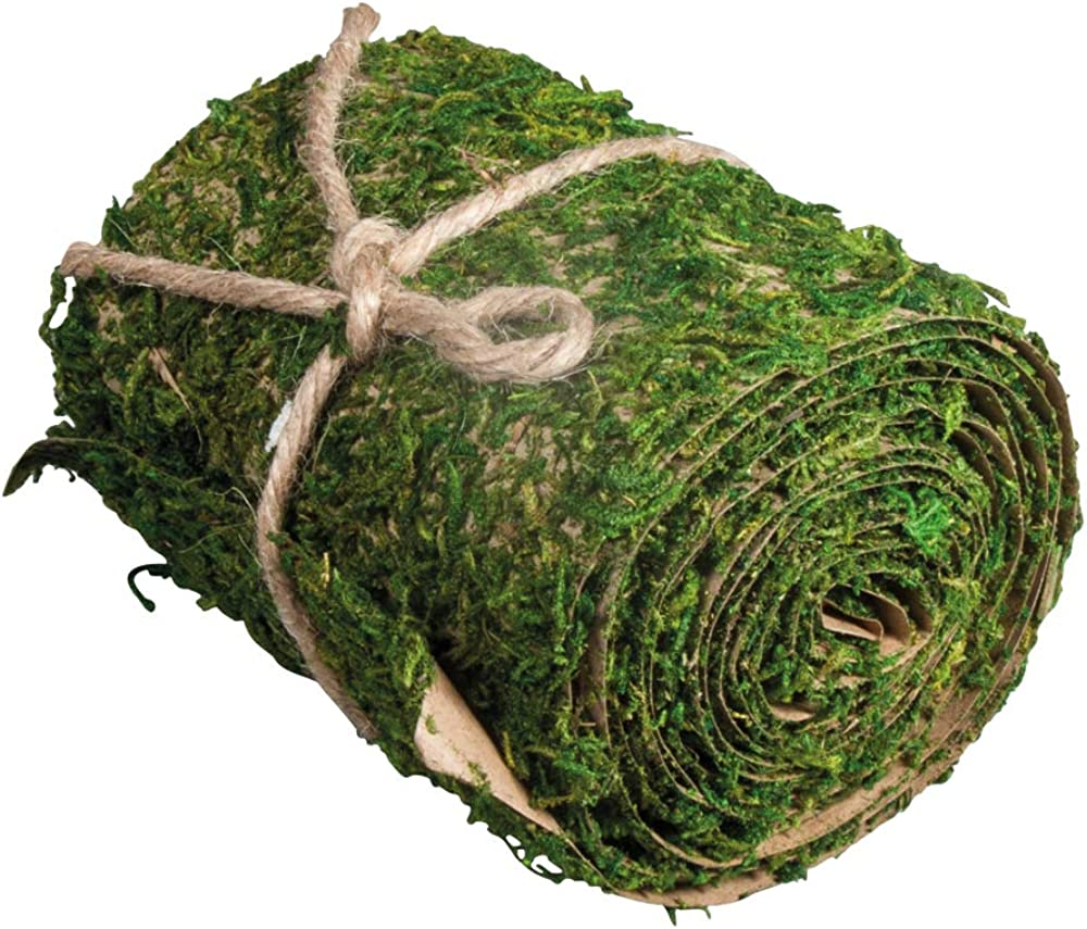 Rayher,tappeto di muschio 2 metri per 10 cm 5531800