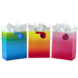 """Hallmark 13"""" Large Gift Bags Assortment with Tissue Paper - Pack of 3 for Birthdays, Baby Showers, B"""