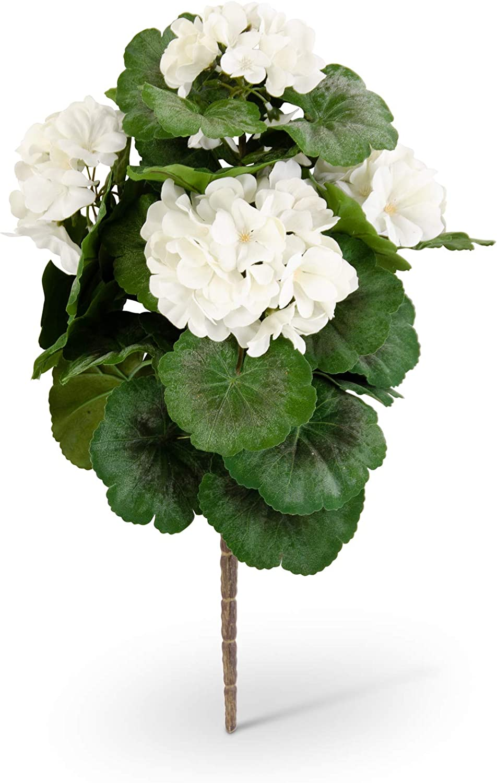 KK Interiors Direct store 11236B-WH 18 White Inch Bush Geranium Ranking TOP5